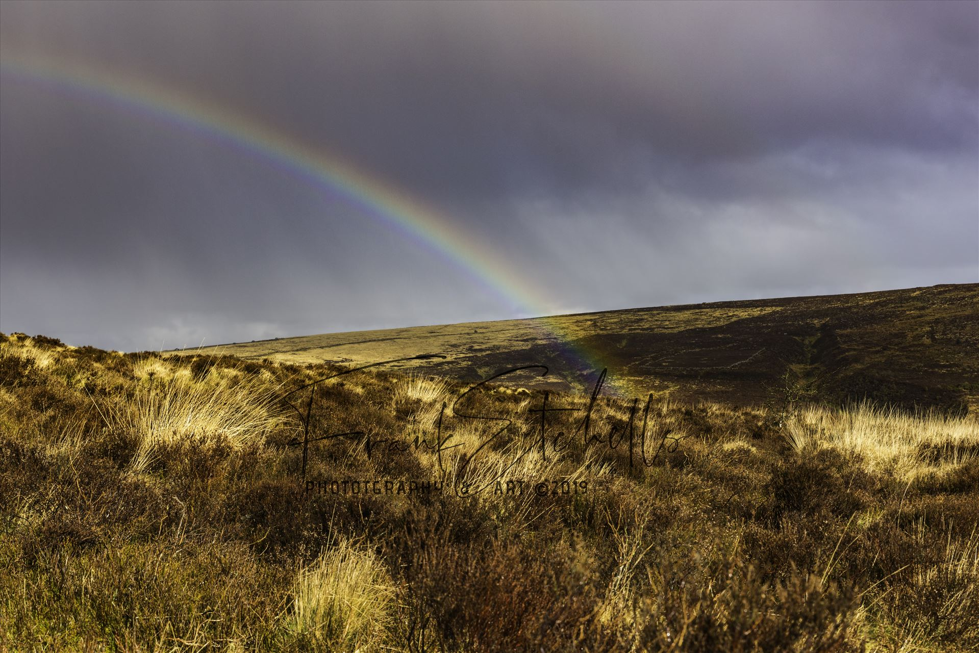 Dartmoor Rainbow 01 - From Warren House Inn towards Bennett's Cross, Dartmoor, after a brief downfall of rain the sun created this rainbow with one end disappearing between the folds in the land. by Frank Etchells Photography