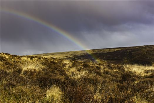From Warren House Inn towards Bennett's Cross, Dartmoor, after a brief downfall of rain the sun created this rainbow with one end disappearing between the folds in the land.