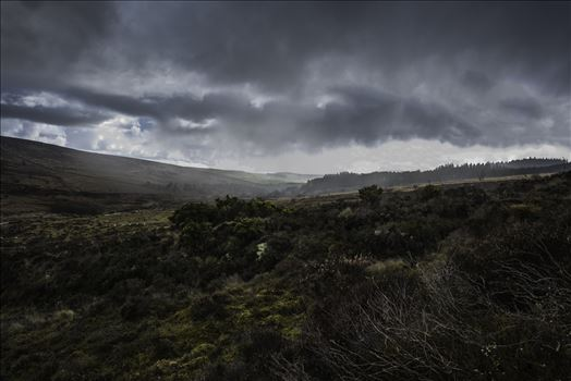 Incoming rain from the direction of Sousson's Farm, Yelverton, Grimspound, Hameldown Tor, Hookney Tor and Ponsworthy on Dartmoor walking from Warren House Inn.