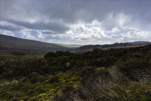 Rain clearing from the direction of Sousson's Farm, Yelverton, Grimspound, Hameldown Tor, Hookney Tor and Ponsworthy on Dartmoor walking from Warren House Inn, moorland, windy, rain, brisk wind,